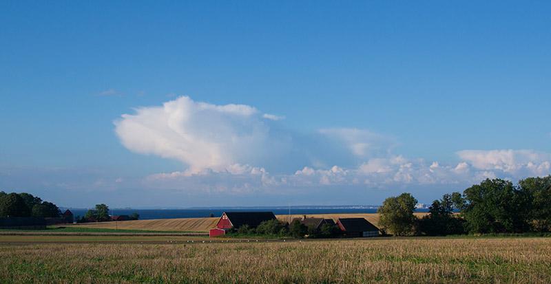ferme au milieu des champs de blé à Ven