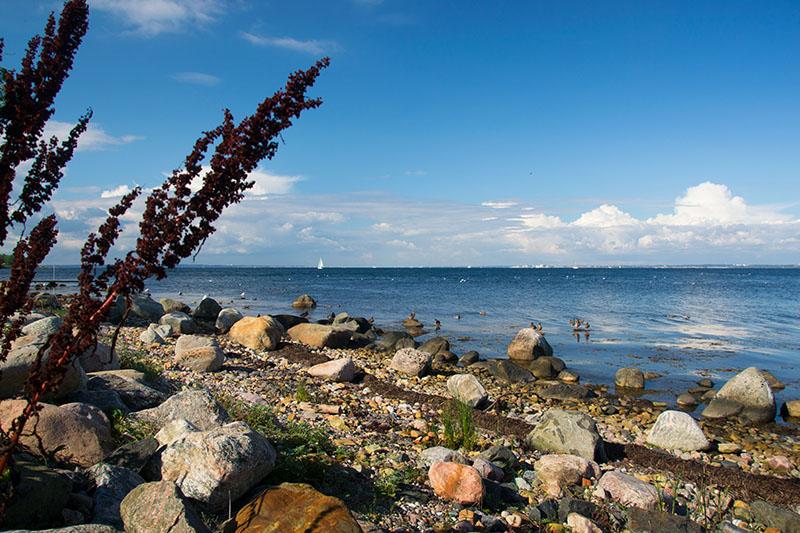 paysage île de ven landskrona