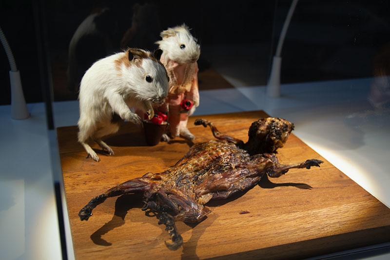 disgusting food museum guinea pig