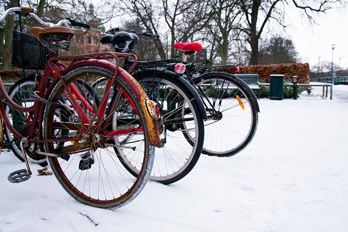 neige malmö centre-ville