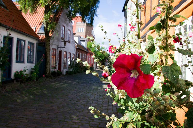 møllestien rue danemark århus